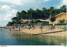D33  CLAOUEY  La Plage, Les Bords Du Bassin   ..... - Arcachon