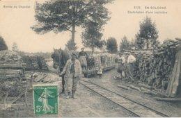 En Sologne - Exploitation D'une Sapinière - Cheval De Trait - Wagon - édit LL N° 5772 Circulée 1916 - France