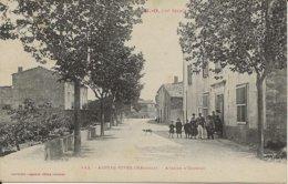 D 34   AIGUES VIVES  Avenue D'Olonzac   (Pub Au Dos) - Altri Comuni
