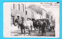 Photo Format Carte Postale HESBAYE 1946 Transport De Betteraves Vers La Sucrerie - Belle Animation - 2 Scans - Oreye