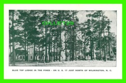 WILMINGTON, NC - BLUE TOP LODGE & COTTAGES IN THE PINES ON U.S. 17 - - Wilmington