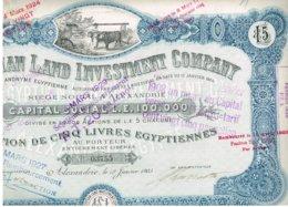 Titre Ancien - The Egyptian Land Investment Company - Titre De 1905 - Déco - Banque & Assurance