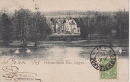 CPA Précurseur Beggen - Château Emile Metz - Postcards