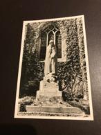 Koolskamp - Oorlogsgedenkteken Foto-postkaart - Foto Callewaert (Ardooie) - Ardooie