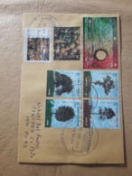 Enveloppe Argentine Distribuée Avec Des Timbres D'arbres Et De Fruits - Argentine