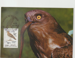 Carte-Maximum FRANCE N° Yvert 2338 (CIRCAETE) Obl Sp Ill Aubigny Aux Kaysnes (Ed Terrasse) - 1980-89
