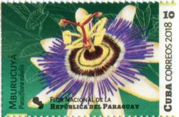 Lote CU2018-17, Cuba, 2018, Sello, Stamp, Flores De America, 8 V, Flower, Orchid, Guyana, Honduras, Colombia - Kuba
