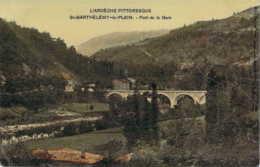 07 ARDECHE Le Pont De La Gare De St BARTHELEMY Le PLEIN Plain Carte Colorisée Vernissée - Other Municipalities