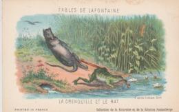 FABLE DE LA FONTAINE LA GRENOUILLE ET LE RAT - Contes, Fables & Légendes