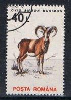 Roemenie Y/T 4099 (0) - 1948-.... Repúblicas