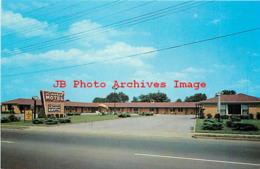 259579-Kentucky, Bowling Green, Laurel Motel, Pictorial Publishers By Dexter Press No 93493 - Bowling Green