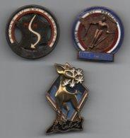 NO Pin's BROCHES ESF U.C.P.A JEAN BOUVIER (augis Lyon, ((très Rare))),flèche Bronze Et Le Cabri ..BT14 - Wintersport