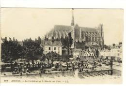 Carte Postale Ancienne Amiens - La Cathédrale Et Le Marché Sur L'eau - Amiens