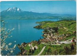 Weggis Am Vierwaldstättersee Mit Pilatus - (Suisse/Schweiz) - LU Lucerne