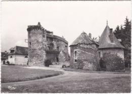 19. Gf. POMPADOUR. La Rivière. Succursale Des Haras. 1503 - France