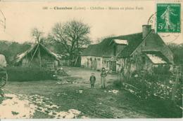 CHAMBON-CHATILLON-MAISON EN PLEINE FORET - France