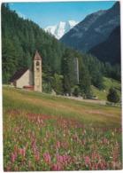Kirche Sta. Maria Mit Piz Palü Pontresina -  (Suisse/Schweiz) - GR Grisons