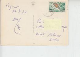 LIBANO  1972 - - Yvert 277 - Fauna - Uccelli - Libano