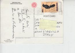BAHAMAS 1992 - Yvert  735 - Fauna - Uccelli - Bahamas (1973-...)