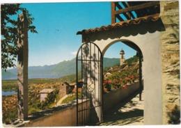 Brione Locarno - (Lago Maggiore) - (Suisse/Schweiz) - TI Ticino