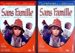 """""""Les Trésors De La Télévision """" - Sans Famille - Feuilleton TV De 1981 - ( Deux DVD ) - - TV-Serien"""