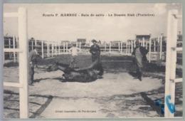 Finistère  Le Dossen Siek - France