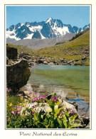 05 - Hautes Alpes - Lac De L'Etoile - Les Agneaux - Fleurs - Voir Scans Recto-Verso - Autres Communes