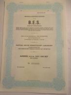 Action Belge : Brussels European Services - Antwerpen - Aandeel M N W Van 1000 BEF - Non Classés