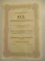 Action Belge : Brussels European Services - Antwerpen - 100 Aandelen M N W Van 1000 BEF - Non Classés