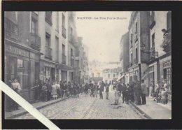 Nantes / La Rue Porte Neuve, Ils Sont Tous Dans La Rue ! / Rare Vasselier - Nantes
