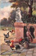 ¤¤  -   Illustrateur   -   Dindes , Coq , Poules  -   ¤¤ - Birds