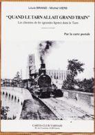 X81543 ALBI Tarn Quand Le Train Allait Grand Train Louis BRIAND Michel VIERS Carto-Club 1991 Cptrain - Albi