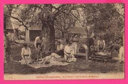 CPA (Réf: Z 2483) Scènes Normandes  (61 ORNE) A La Ferme Les Tondeurs De Moutons - France