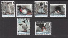 2016 British Antarctic Territory Gentoo Penguins Complete Set Of 6   MNH - Ungebraucht