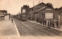 51 MOURMELON GARE DE MOURMELON LE PETIT ARRIVEE DU TRAIN RARE + PUB DEMENAGEMENTS HENRI WALBUM REIMS - Frankrijk