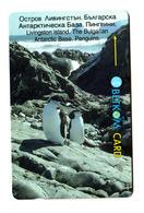 Bulgaria, Livingston Island, Penguins, Phonecard - Bulgarie