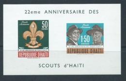 Haiti 1962 Boy Scout Anniversary Miniature Sheet MNH - Haiti