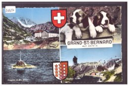 GRAND SAINT BERNARD - LES CHIENS - TB - VS Valais