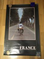 AFFICHE FRANCE PROVENCE PHOTOGRAPHIE ELLIOTT ERWITT DIM 60 X 90 CM - Affiches