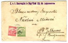 1917 K.u.K. RESERVESPITAL Nagyvárad Hungary Abt. Lungensanatorium Violet One-liner On Cut Cover - Hongrie