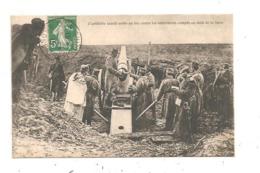 L'Artillerie Lourde Serbe (D.3267) - Materiaal