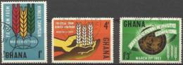 GHANA - 1963 Freedom From Hunger  Used  SG 300-2  Sc 132-4 - Ghana (1957-...)