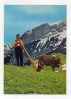 Liechtenstein - Suonatore Di Corno - Non Viaggiata - Vedi Foto - (FD17910) - Liechtenstein