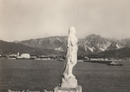 Cartolina - Postcard / Viaggiata - Sent/  Marina Di Carrara, Porto . ( Gran Formato ) - Carrara