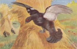 AR75 Artist Signed - Black Game By Eileen Drummond - Game Bird, Tuck Oilette - Pájaros