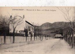 ALGERIE CANROBERT AVENUE DE LA GARE ET L'ECOLE INDIGENE - Autres Villes