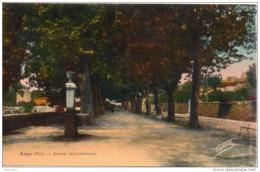 83. Aups. Avenue Saint Sebastien - Aups