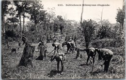 AFRIQUE -- OUGANDA - Défricheurs Kikouyous - Oeganda