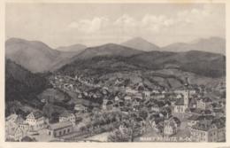 AK - NÖ - Markt Ybbsitz- Ortsansicht 1959 - Amstetten
