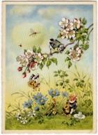 GNOMI - FOLLETTI - GNOMO, GRILLI, FARFALLE, UCCELLI TRA FIORI, SUONATORI - 1953 - Fairy Tales, Popular Stories & Legends